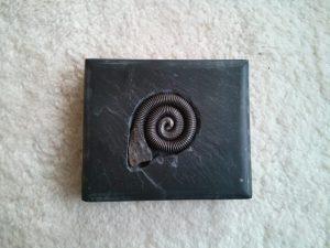 Escultura fósil de hierro embutido en pizarra